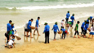 Sổ tay Hướng dẫn xử lý nước và vệ sinh môi trường trong mùa bão lụt