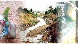 Nước sức khỏe và hệ sinh thái